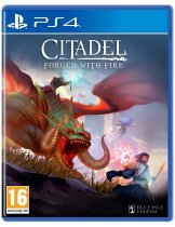 Диск Citadel: Forged with Fire [PS4]