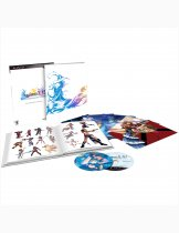 Купить Final Fantasy X / X-2 HD Remaster - Collectors Edition [PS3]