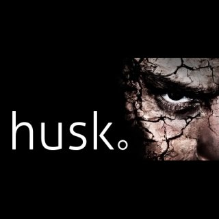 Диск Husk [PC,Jewel]
