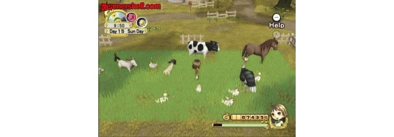 Скриншот игры Harvest Moon: Tree of Tranquility для Wii