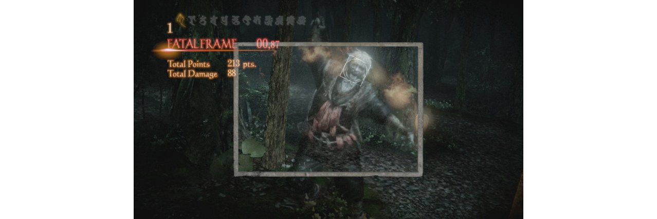 Скриншот игры Project Zero: Maiden of Black Water для WII