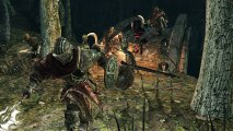 Скриншот № 7 из игры Dark Souls II: Scholar of the First Sin [PS4]