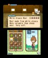 Скриншот № 0 из игры Harvest Moon: Tale of Two Towns [3DS]