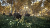 Скриншот № 5 из игры Hunter: Call of the Wild [Xbox One]